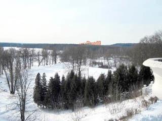 Жители Подмосковья попросили Путина запретить строительство «Мортонграда»