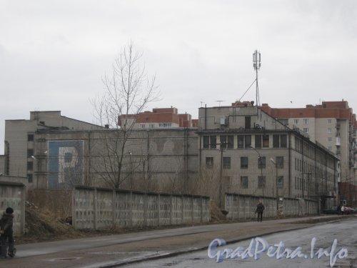 В Петербурге начали застраивать жильем бывшие земли «Ленфильма»