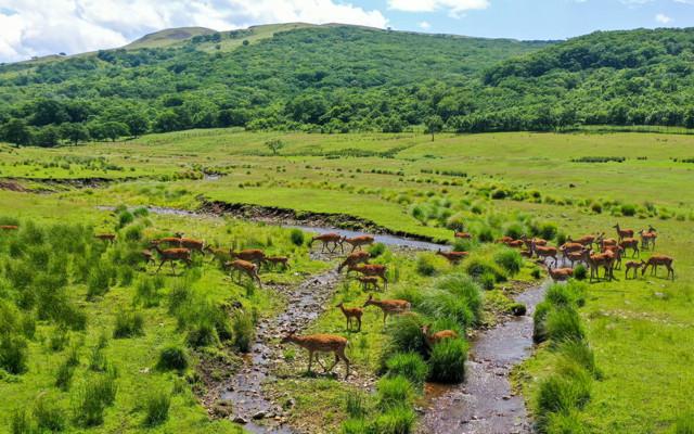 Земли населенных пунктов выведут из состава национальных парков