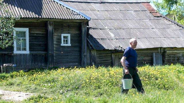 Комитет Госдумы одобрил новый законопроект о дачах и садоводствах