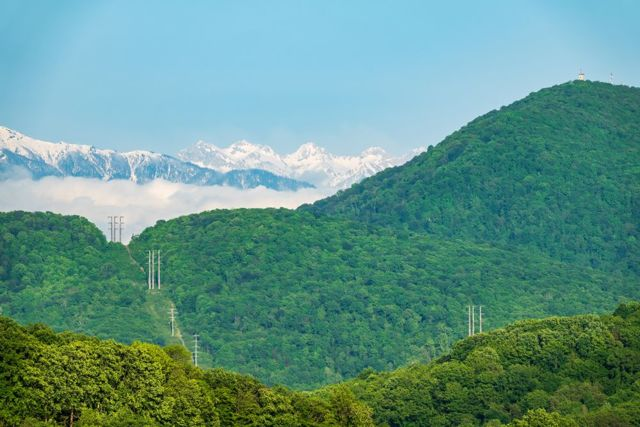 Минприроды разрешило строить в лесах и охраняемых зонах