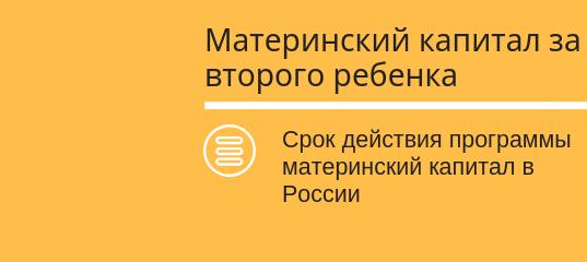 В Петербурге продлевают срок действия региональной программы маткапитала
