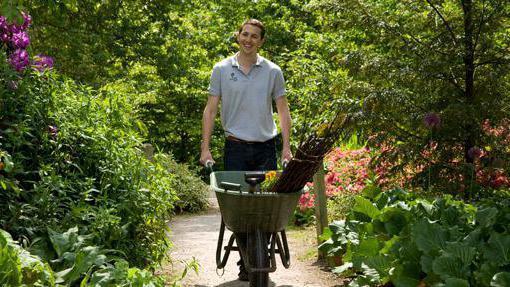Президент подписал новый закон о садоводческих объединениях