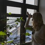 Власти Петербурга склоняют девелоперов строить малоэтажку