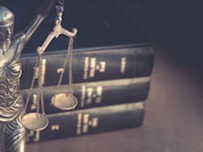 В России могут принять закон о правовом статусе дач