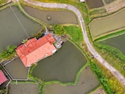 В Подмосковье дешевеют земельные участки без подряда