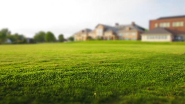 Рыночную переоценку недвижимости приостановят до 2020 года