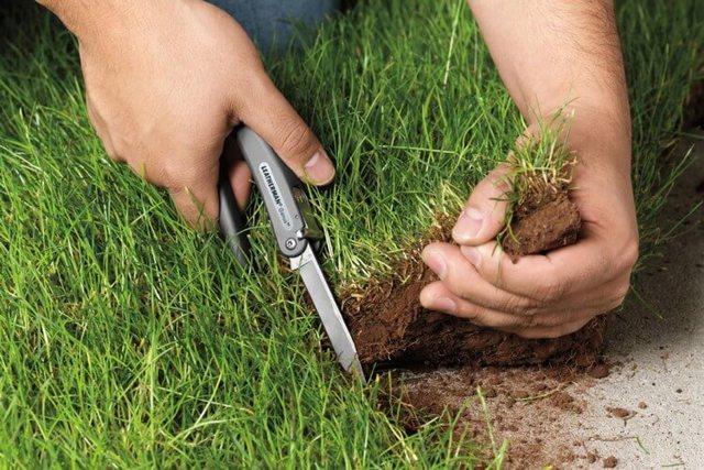 ФСО сможет изымать земли для государственных нужд