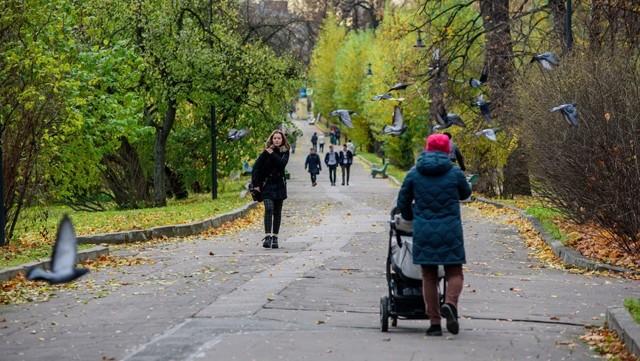 В Невском районе Петербурга возведут многоэтажный жилой комплекс