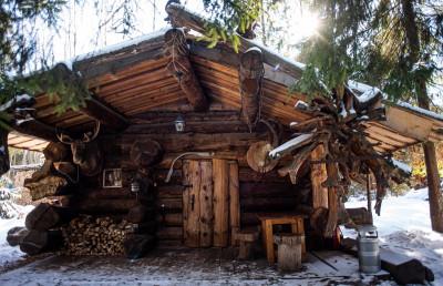 В Подмосковье внук Ельцина построит отель на деревьях
