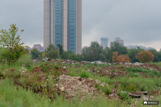 Перспективные территории МГУ застроят жильем